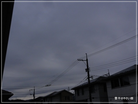 1-DSC01054.jpg