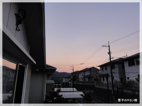 1-DSC06807.jpg
