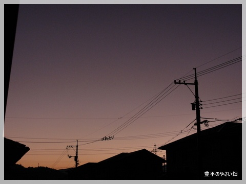 1-DSC08013_20121020212705.jpg