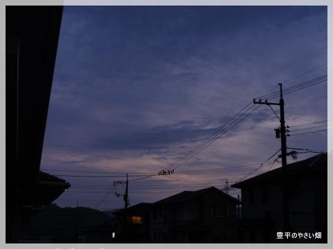 1-DSC08878.jpg