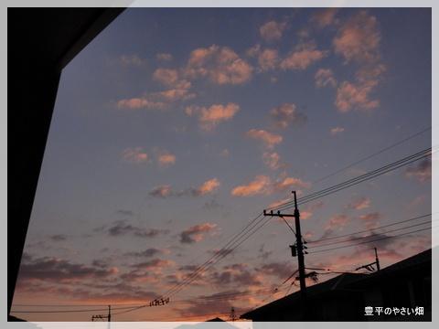 1-DSC08938_20121031220320.jpg