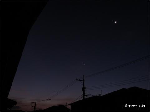 1-DSC09494.jpg