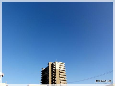 30_20120911221012.jpg