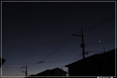 DSC01194-1.jpg