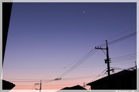 DSC08476-1.jpg