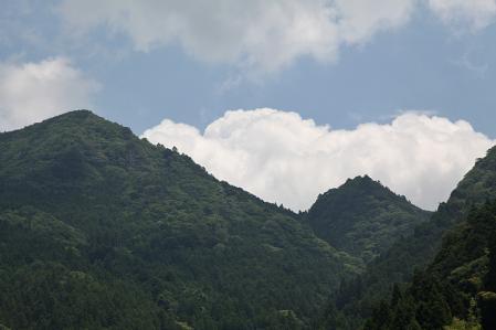 四谷千枚田 夏の空