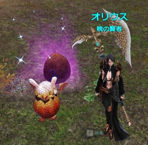 紫卵を発見!