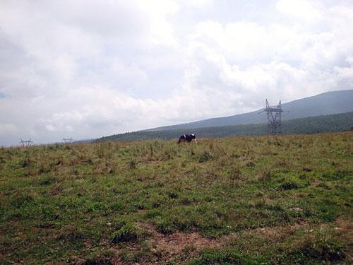 moumou11_20100829