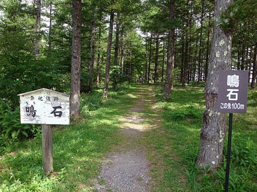 naruishi1_20100829