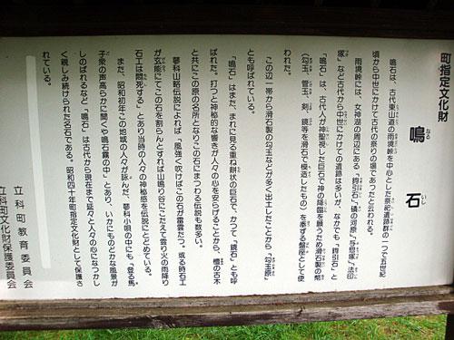 naruishi7_20100829