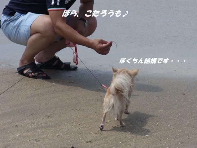 R0011201.jpg
