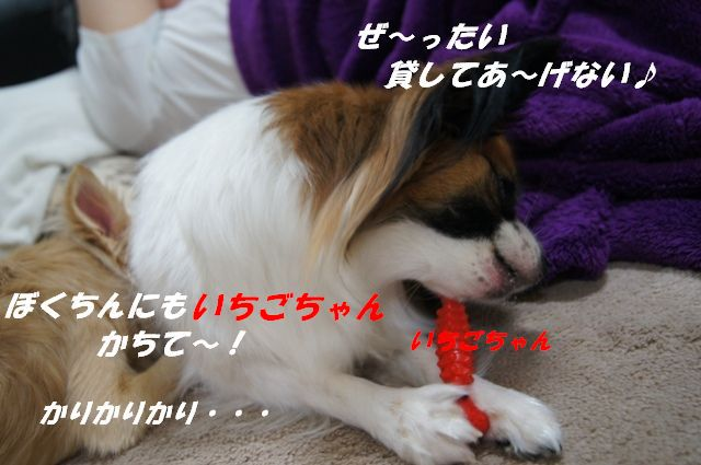SC01318.jpg