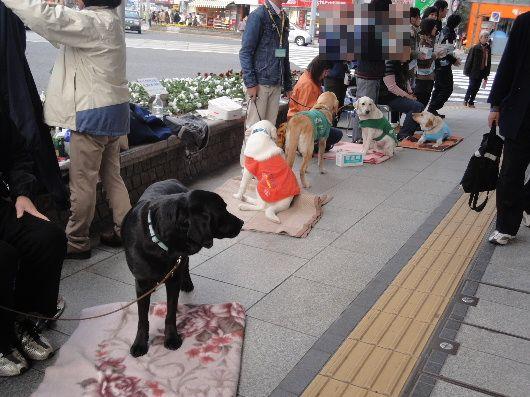 2012_0321_084640.jpg