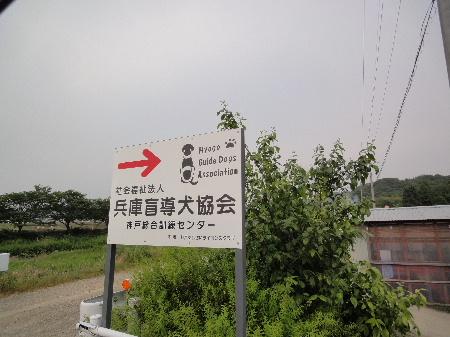 2012_0602_171210.jpg