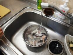 サーモンカマと鶏団子の豆乳19