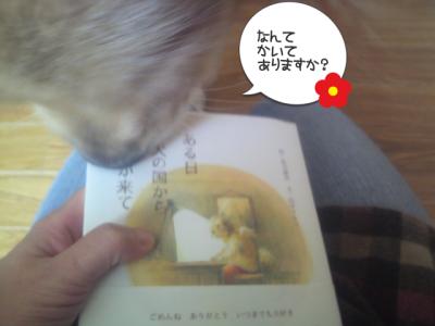 カリヨンも読みたいの?