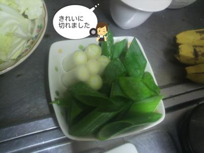 お野菜いっぱいだね