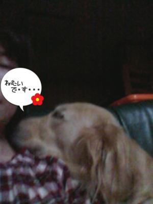 ママも眠いです・・・