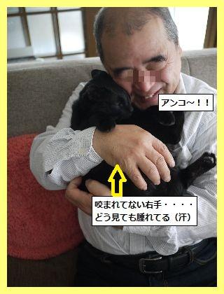 かみなり7