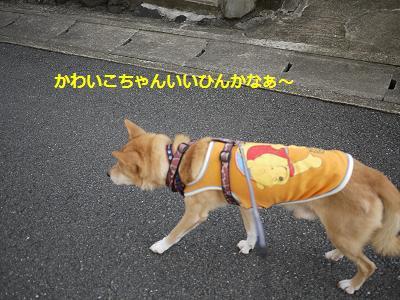 jiiji6.jpg
