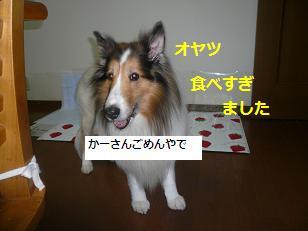 jirai2.jpg