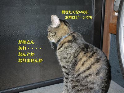 karaoke5.jpg