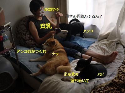 kazoku1.jpg