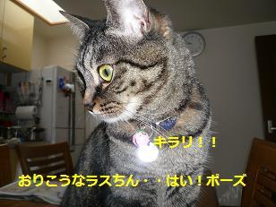omaji3.jpg