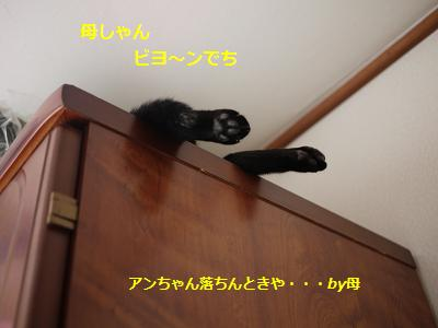 owabi2.jpg