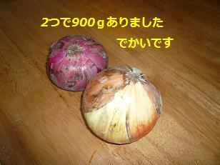 sinnjiru2.jpg
