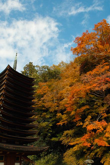 20131118_談山神社01