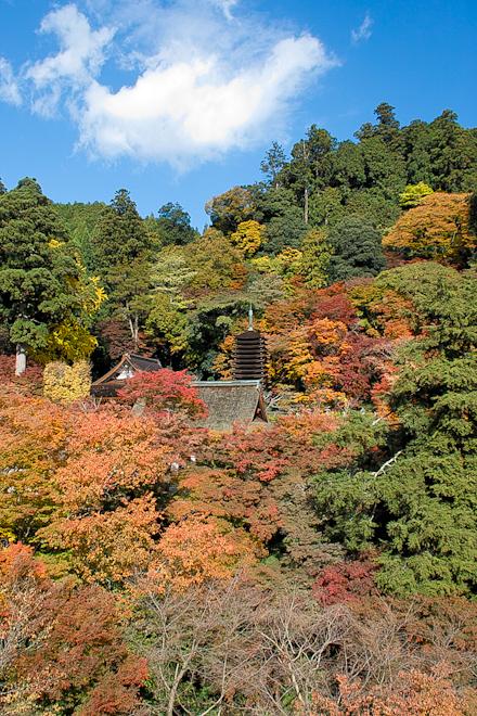 20131118_談山神社07