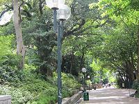 九龍公園5