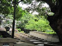 九龍公園4