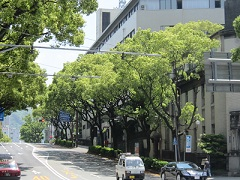 (60)三角亭界隈