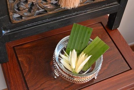 清香白蘭花1