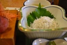 刺身とシラス定食