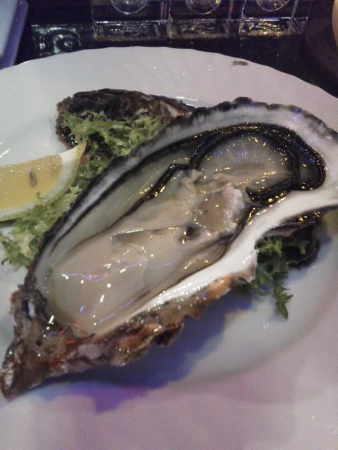 生牡蠣その3