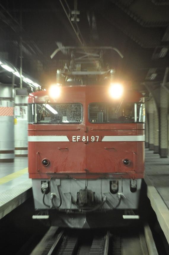 CSC_0837.jpg