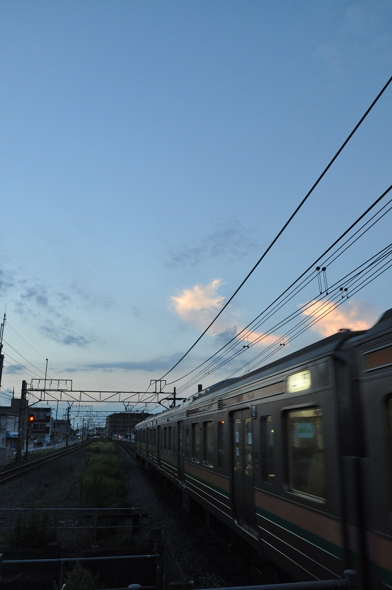 DSC_0455_20120831215520.jpg