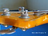 弦の巻き数 スティングレイ