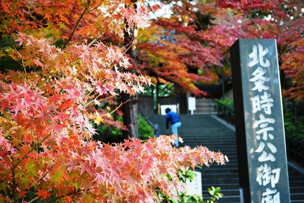 鎌倉25-01