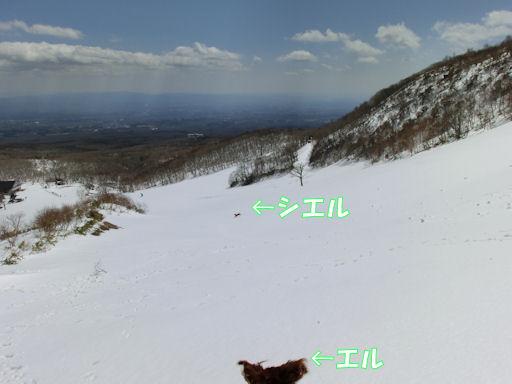 CIMG6933-1.jpg