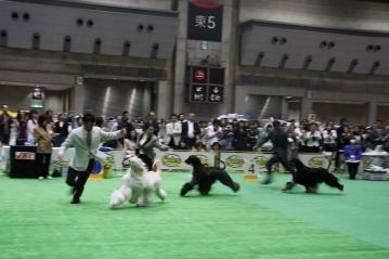 TokyoInter2010