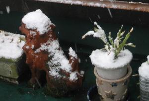 2011.2.11綿帽子blog01