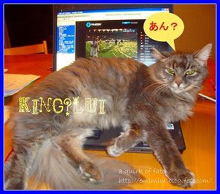 KingLui2.jpg