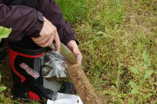 土壌採取5