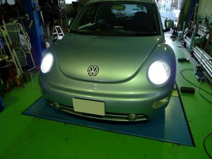 beetle_12_12_04_P3.jpg