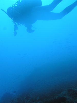 20120624_1.jpg