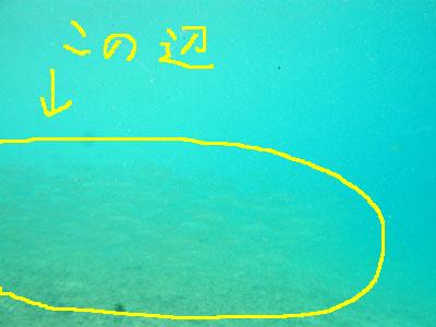 20120829_1.jpg